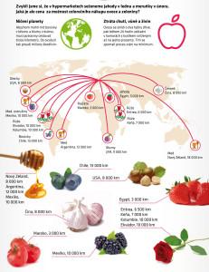 infografika-svet