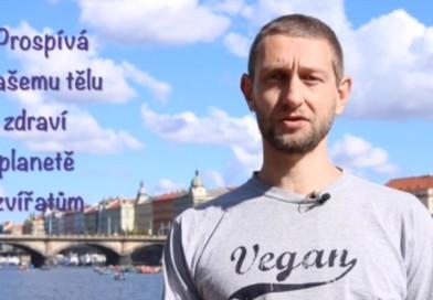 Video-kurz na portálu vimvic.cz