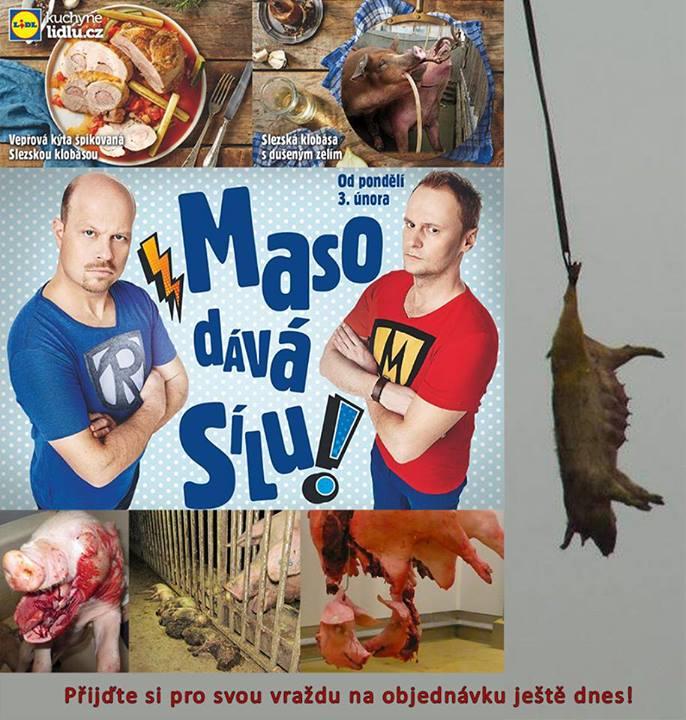 lidl_maso1