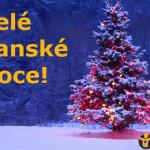 VvV: Veselé veganské Vánoce