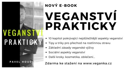 veganství prakticky