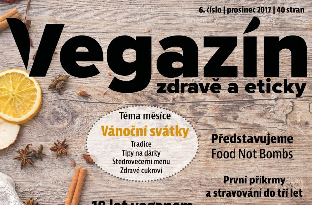 vegazin06