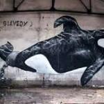 Graffiti pro velryby