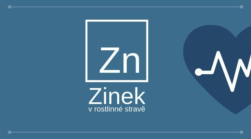 zinek_aticle