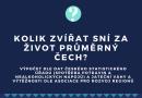 Infografika: kolik zvířat sní za život průměrný Čech?